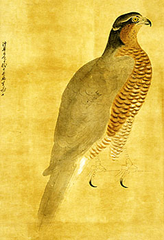八代将軍吉宗の画像 p1_17
